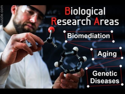 50 Good Topics for Research in the Field of Biology