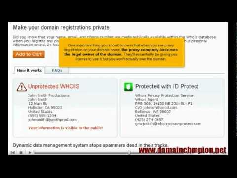 Domain Name Basics 4- Should you go for Private Domain Registration?