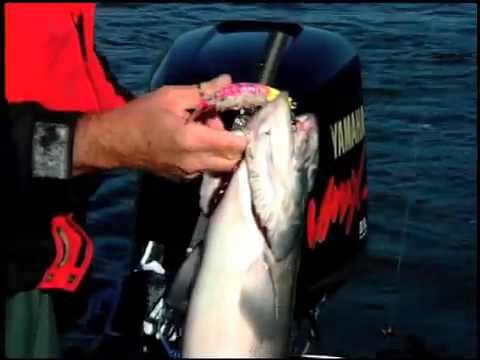 ANCHOR FISHING for Salmon and Steelhead