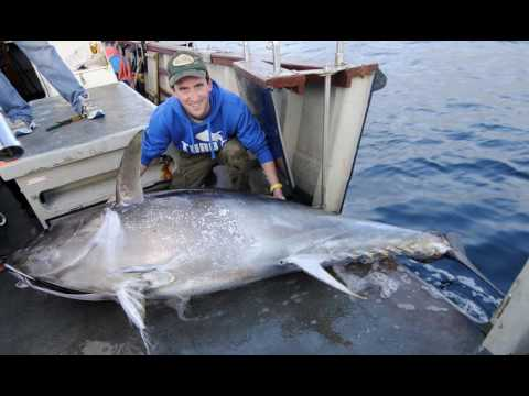Ep  188 Bob Fitchie, Blue Fin Tuna Encounter