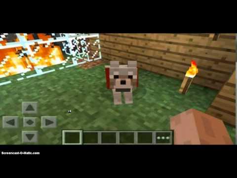 Minecraft Pocket Edition 0.9.0 update wolves?