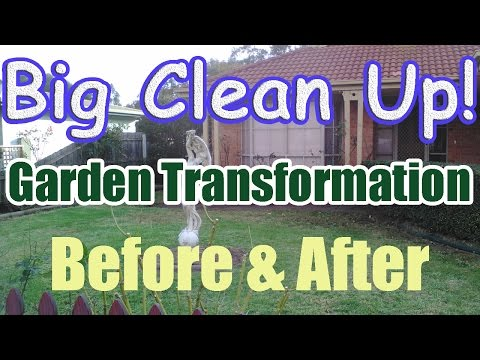 Garden Transformation Before and After (Garden Transformation Big Clean Up)