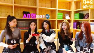 Download [ITZY] 있지(ITZY)가 직접 알려주는 멤버별 혈액형 Video