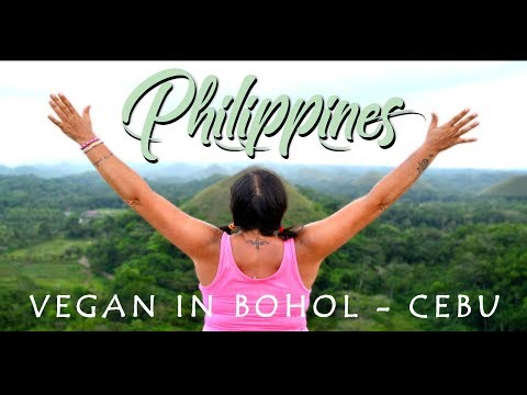 PHILIPPINES - Vegan Survival Travel Guide // BOHOL - CEBU