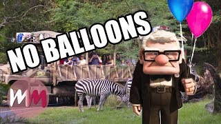Top 5 Surprising Things Disney Parks Don