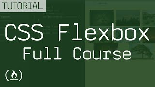CSS Flexbox Course