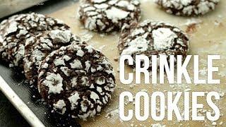 Fudgy Chocolate Crinkle Cookies!! How to Make Crinkles Recipe