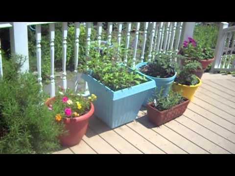 Deck Decorating On A