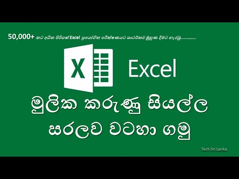 Microsoft Excel 2013 for biginners (in Sinhala) tutorial