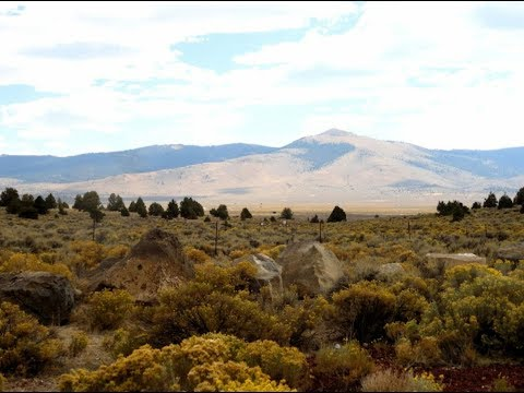 SOLD!  40 Acres for sale in Central Oregon. Spectacular mountain views and oceans of desert sage