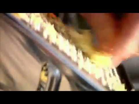 Gordon Ramsay How to Stir Fry Beef - YouTube.flv
