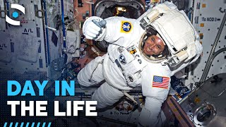 Life Inside The International Space Station