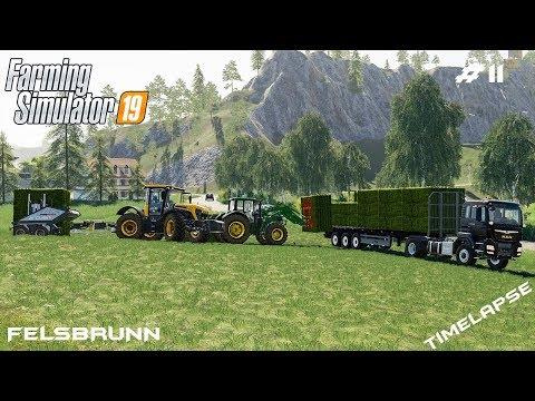 Silage harvest *full bunker*   Animals on Felsbrunn   Farming