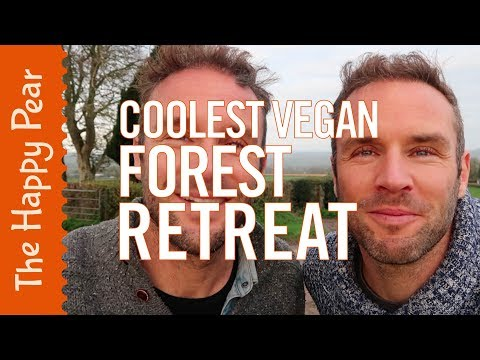 THE COOLEST VEGAN FOREST RETREAT EVER! | THE HAPPY PEAR