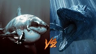 Megalodon vs Mosasaur-My Thoughts