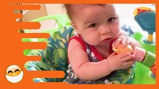 Lustigste Spielzeuge für Babys - Baby Reaktionsvideos