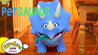 Dinosaur Compilation   My Petsaurus   Series 3   CBeebies