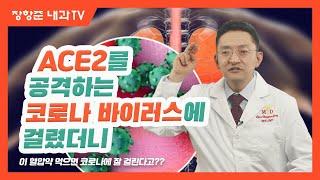 제41강:ACE2를 공격하는 코로나 바이러스에 걸렸더니
