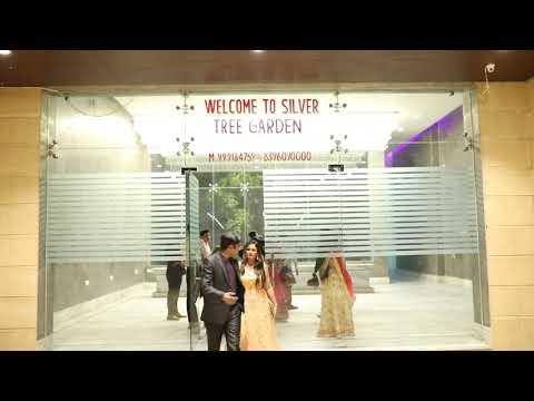 Xxx Mp4 Wedding Decoration At Silver Tree Rohtak 3gp Sex