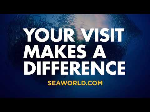 Park to Planet™ – Your Visit Makes a Difference   SeaWorld® Parks & Entertainment