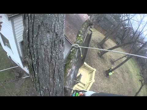 Rigging 8 inch limb over house