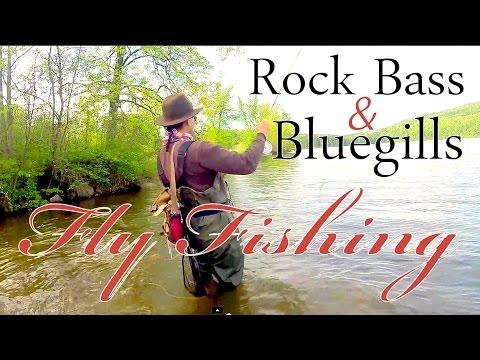 Orvis Reel ~ Fly Fishing for Rock Bass & Bluegills