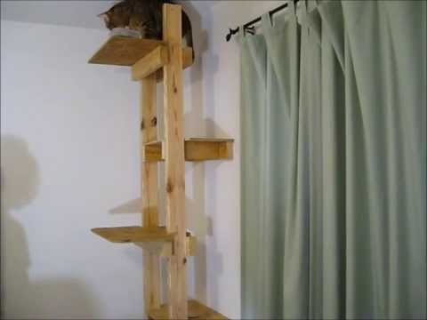 How to build a cat tree or ladder