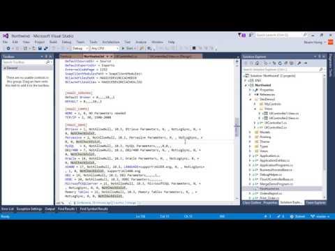 Using values from ini in the Visual Studio Designer