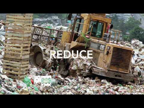 Solid waste Lesson 2 : Effect of solid waste and solid waste management