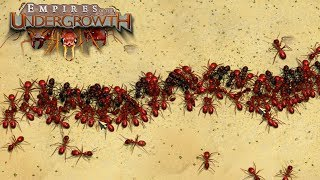THE GREAT ANT WAR! - Empires of the Undergrowth BETA Gameplay   Ep3