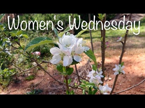 Spring Planting and Unleavened Bread