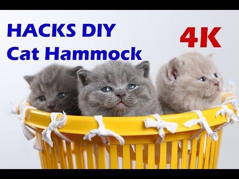 How to make a Cat Bed Hammock DIY Tutorial 4K