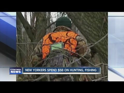 Hunting, fishing mean estimated $5B boon for NYS
