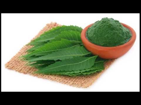 Neem Oil Relieves Eczema Symptoms How To Use At Home