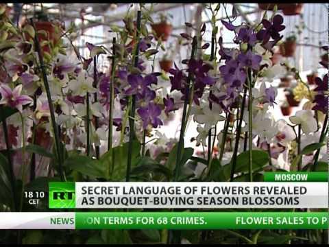 Learn secret language of flower-giving
