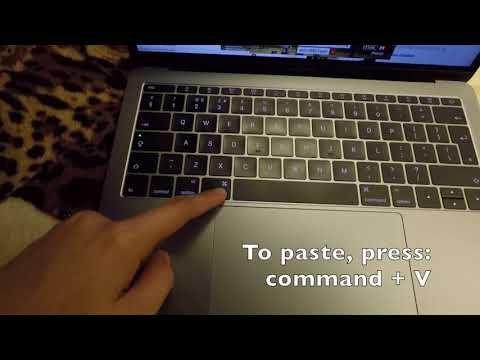Macbook Help: How to Copy and Paste Texts on a Macbook