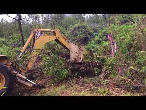 Clearing land in Big Island Hawaii