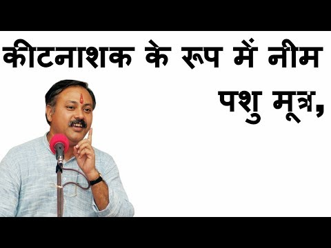 Rajiv Dixit on cattle urine, neem as insecticide | Farming