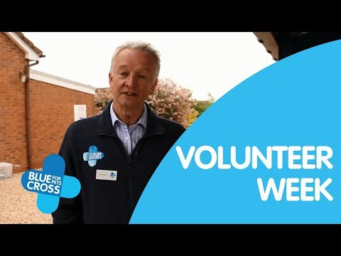 Volunteers Week 2018 Video