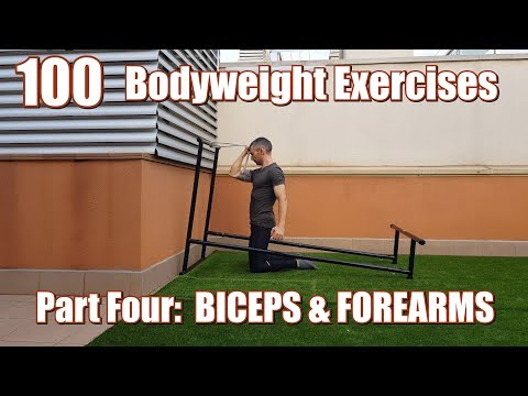 100 BODYWEIGHT EXERCISES (NO GYM REQUIRED) | BICEPS & FOREARMS