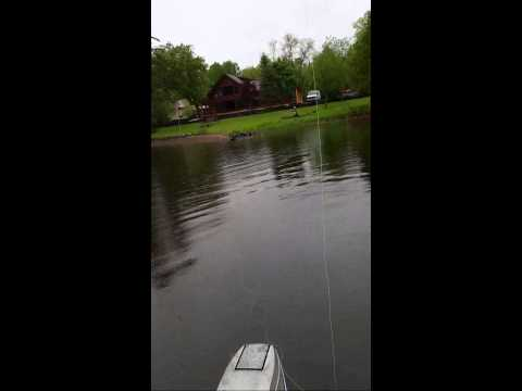 How to Catch Bluegills - Using a Fly Rod with a Wet Fly Ant
