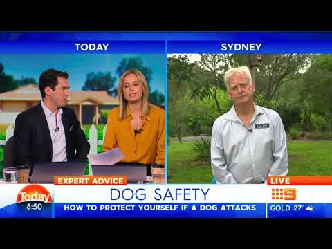 Steve and Vicki's live interview with Channel 9 Today show