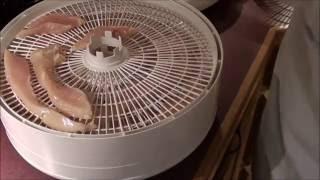 Dehydrated Chicken Dog Treats