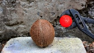 EXPERIMENT: Glowing 700 degree metal ball VS COCONUT