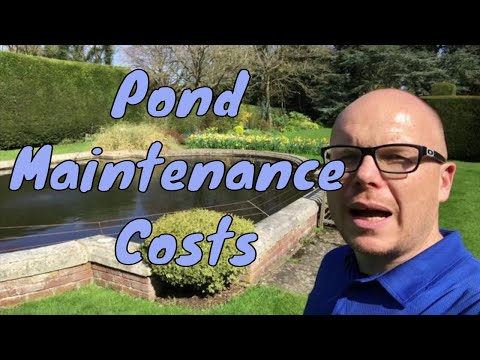 Pond Maintenance Costs - UK - The cost of pond maintenance