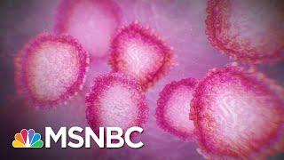 Still No Leadership From Trump Officials On Fighting Coronavirus | The 11th Hour | MSNBC