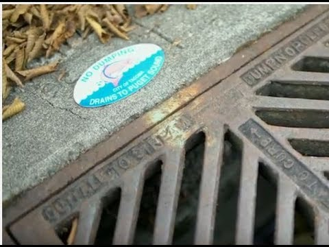 Working Together to Manage Stormwater