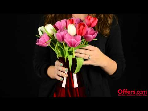 Offers.com - How to Keep Your Cut Flowers Fresh