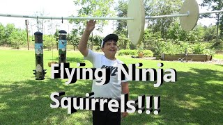 Squirrel Ninja Rope Course!  Bird Feeders SAFE at last!!