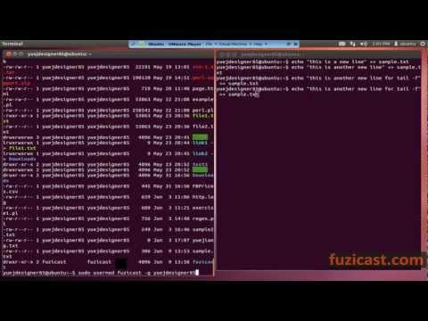 UNIX-1.6 grep, useradd, usermod commands